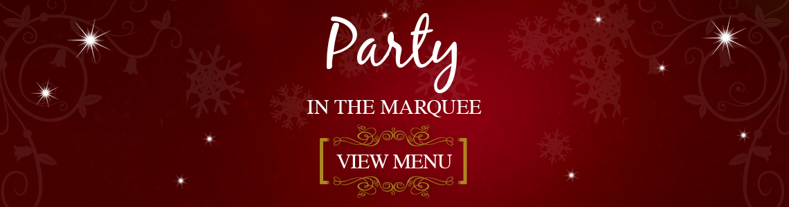 6567 Web-Button-Xmas-Style-1140x300px-sRGB-Party-in-marquee