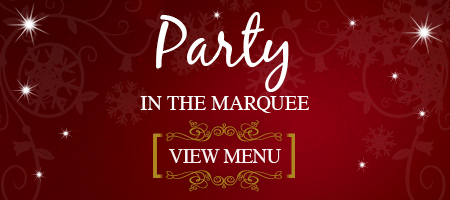 6567 Web-Button-Xmas-Style-450x200px-sRGB-Party-in-marquee